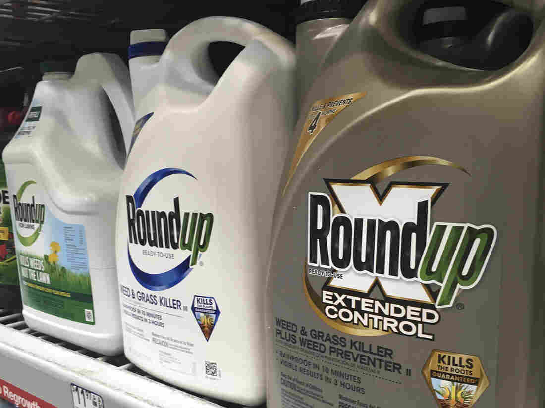 USA jury finds Roundup caused man's cancer