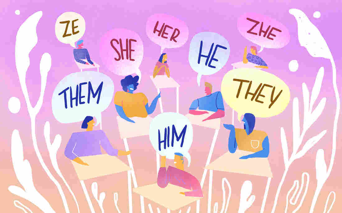 Some colleges now let students input their pronouns into campus data systems.