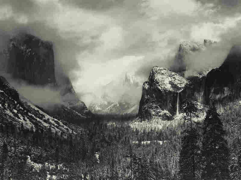 This Ansel Adams photo sold for $722,500 at an auction this week — a record for a work by Adams. When an artist is just starting out, and isn't famous enough to command huge sums at auction, who decides how much a work of art is worth?
