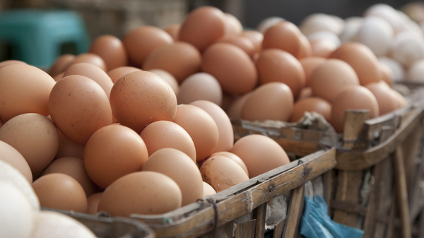 Statisticians say it may not be wise to put all your eggs in the significance basket.