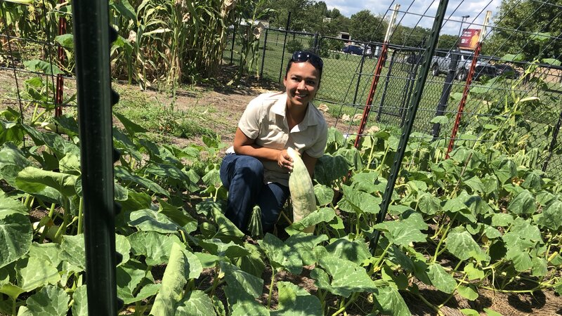 Seed Bank Helps Preserve Cherokee Culture Through Traditional Foods