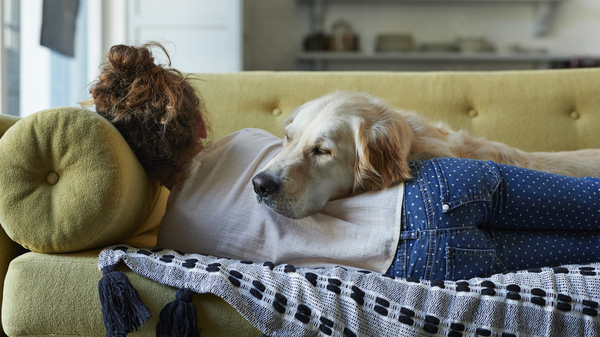 A 20-minute nap refreshes. Just don