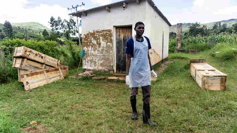 Cyclone Idai: A Town Is Haunted By The Smell Of Death