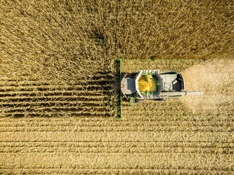 New Study Finds That Money Has Large >> Growing Corn Is A Major Contributor To Air Pollution Study Finds