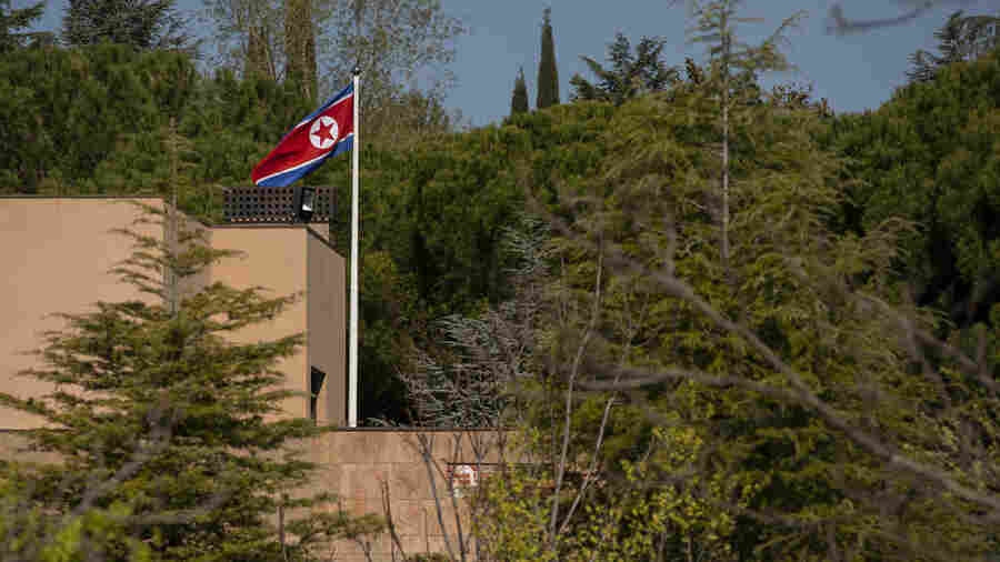 After Madrid Embassy Raid, North Korean Defector Group Vows More Action