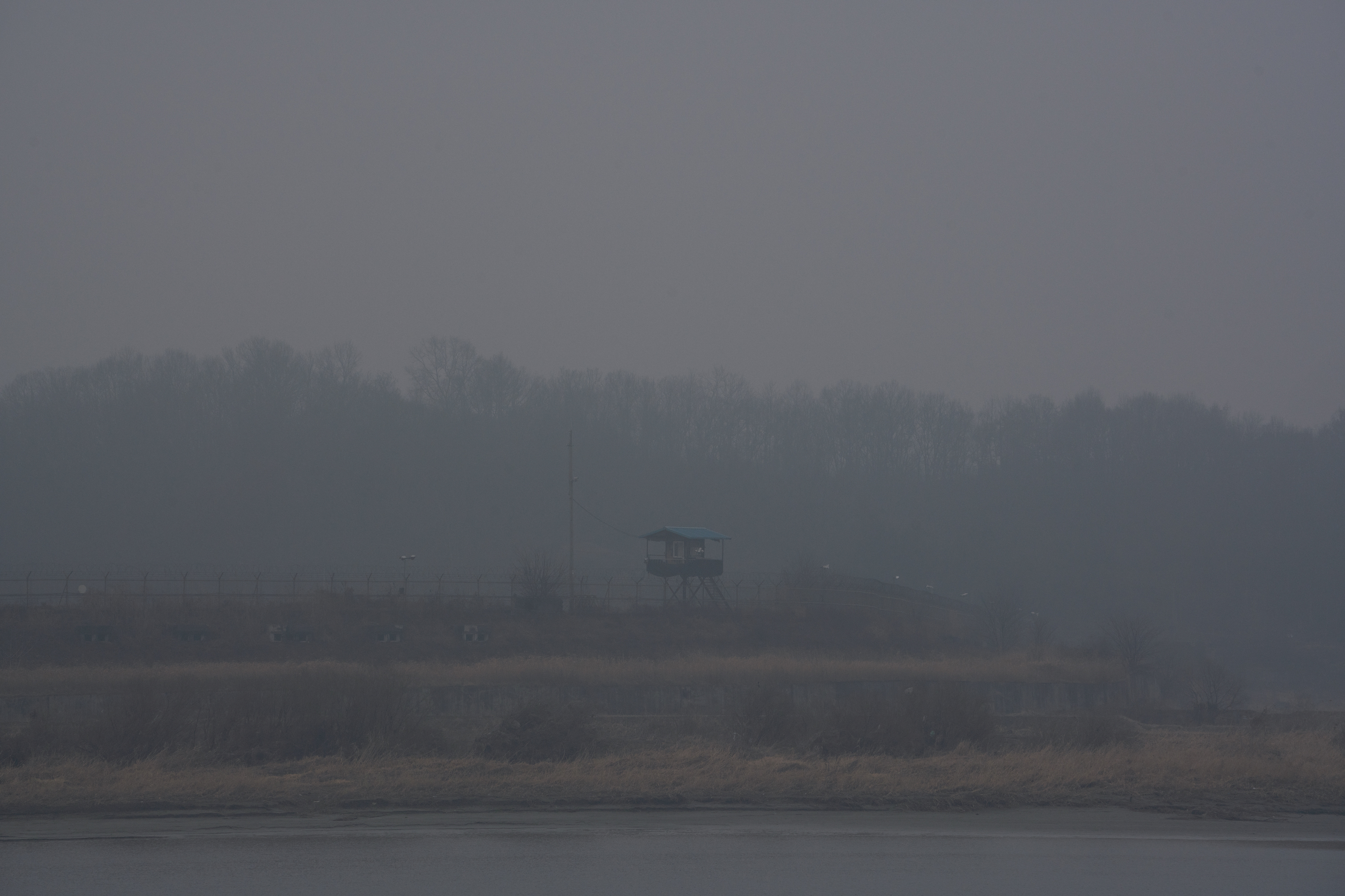 In Korean DMZ, Wildlife Thrives. Some Conservationists Worry Peace Could Disrupt It