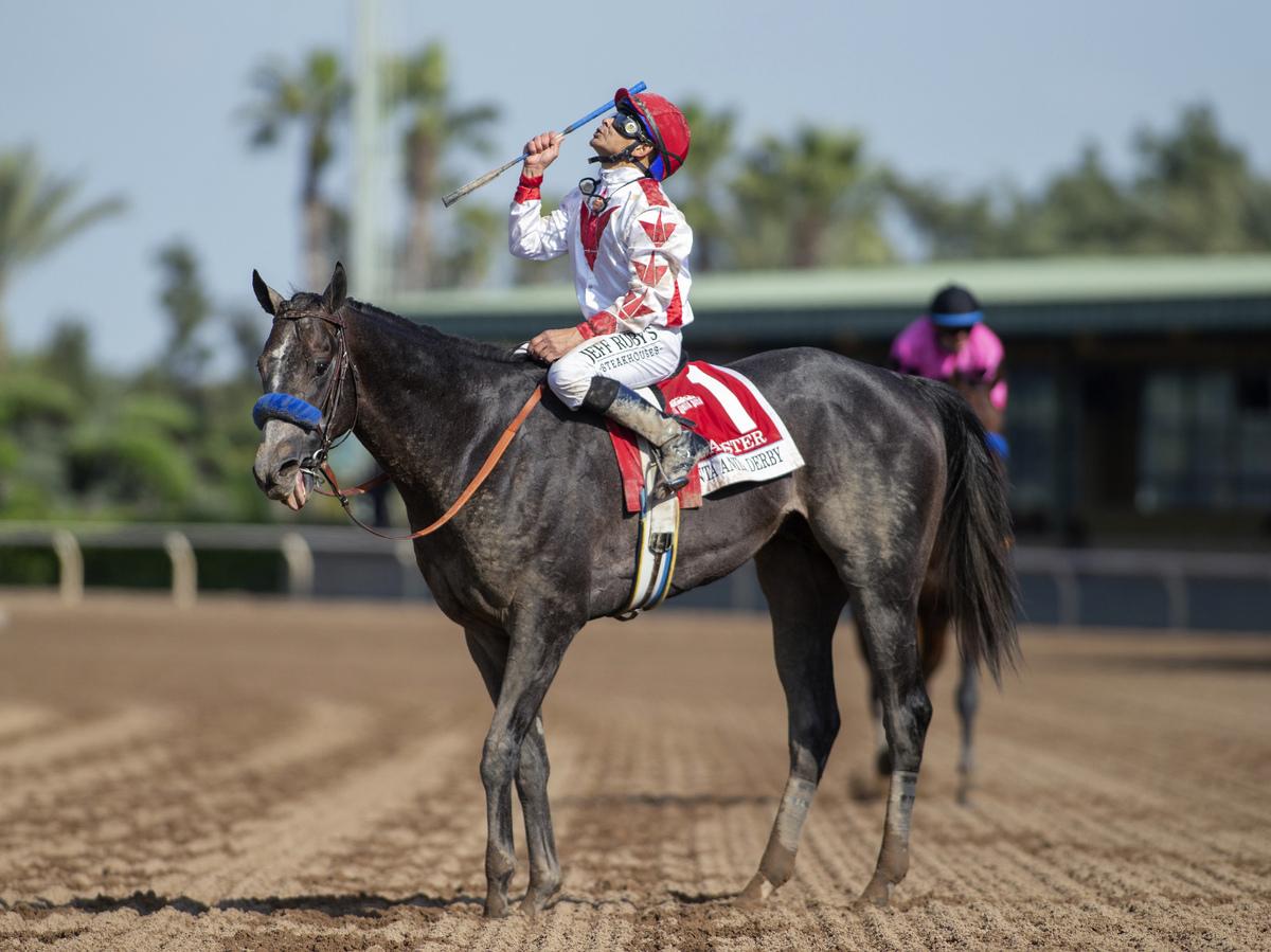 Horse Racing Deaths Santa Anita Track Makes Changes Npr
