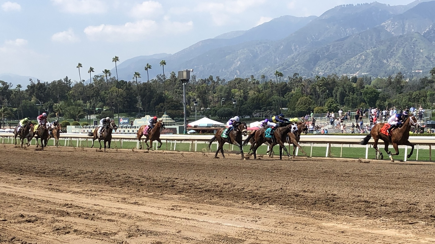 Horse Racing Deaths Santa Anita Track Makes Changes Npr