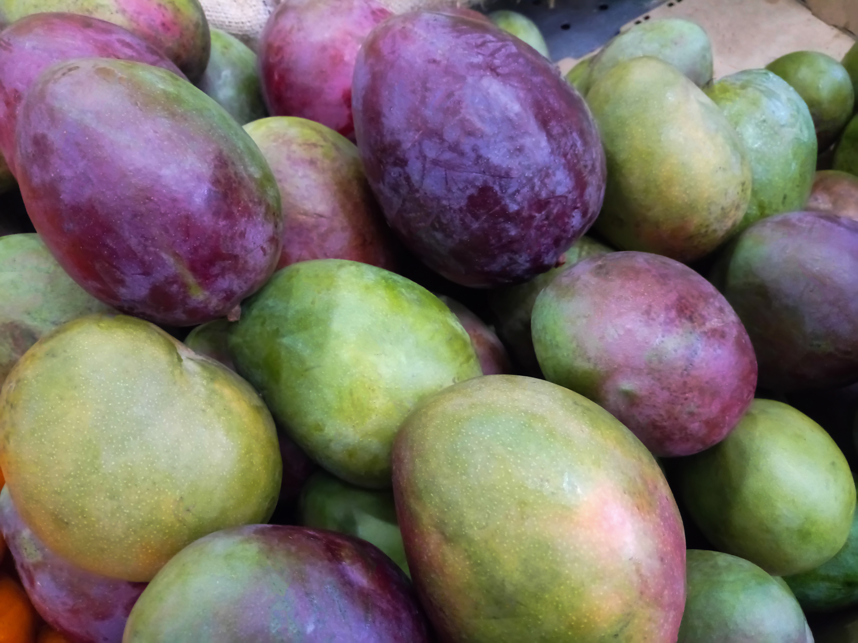 With Venezuela In Chaos, Mangoes Are Unsung Heroes