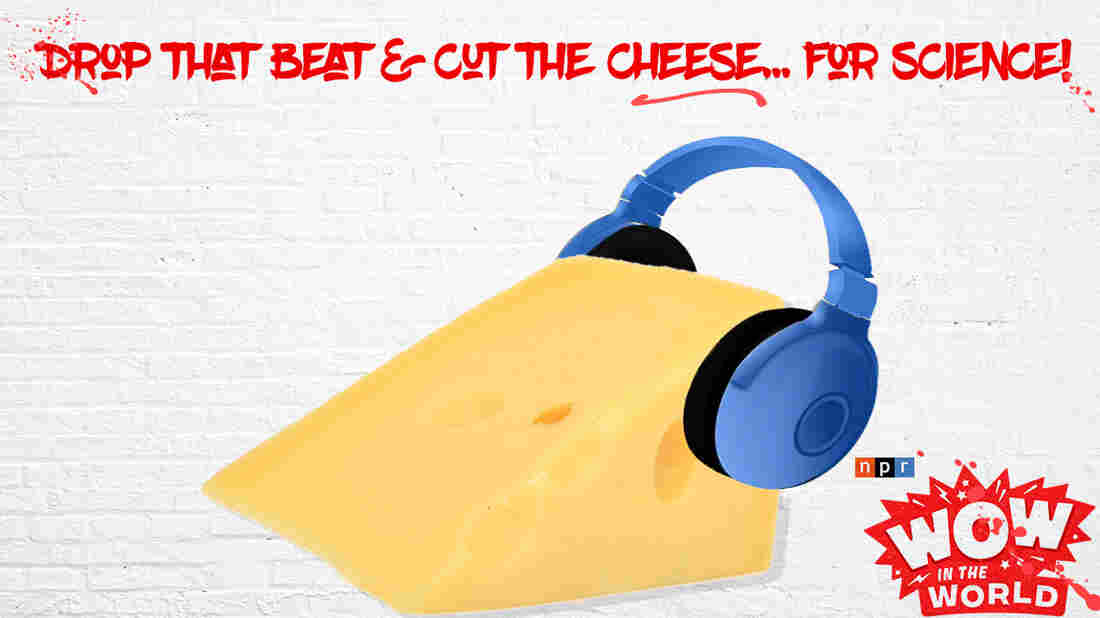 Would you care for a little brie marinated in hip hop? How about some cheddar dipped in rock and roll? Swiss serenaded by an up-beat pop classic! Turns out that cheese have preferences when it comes to music, and those preferences determine everything from their taste to their smell!