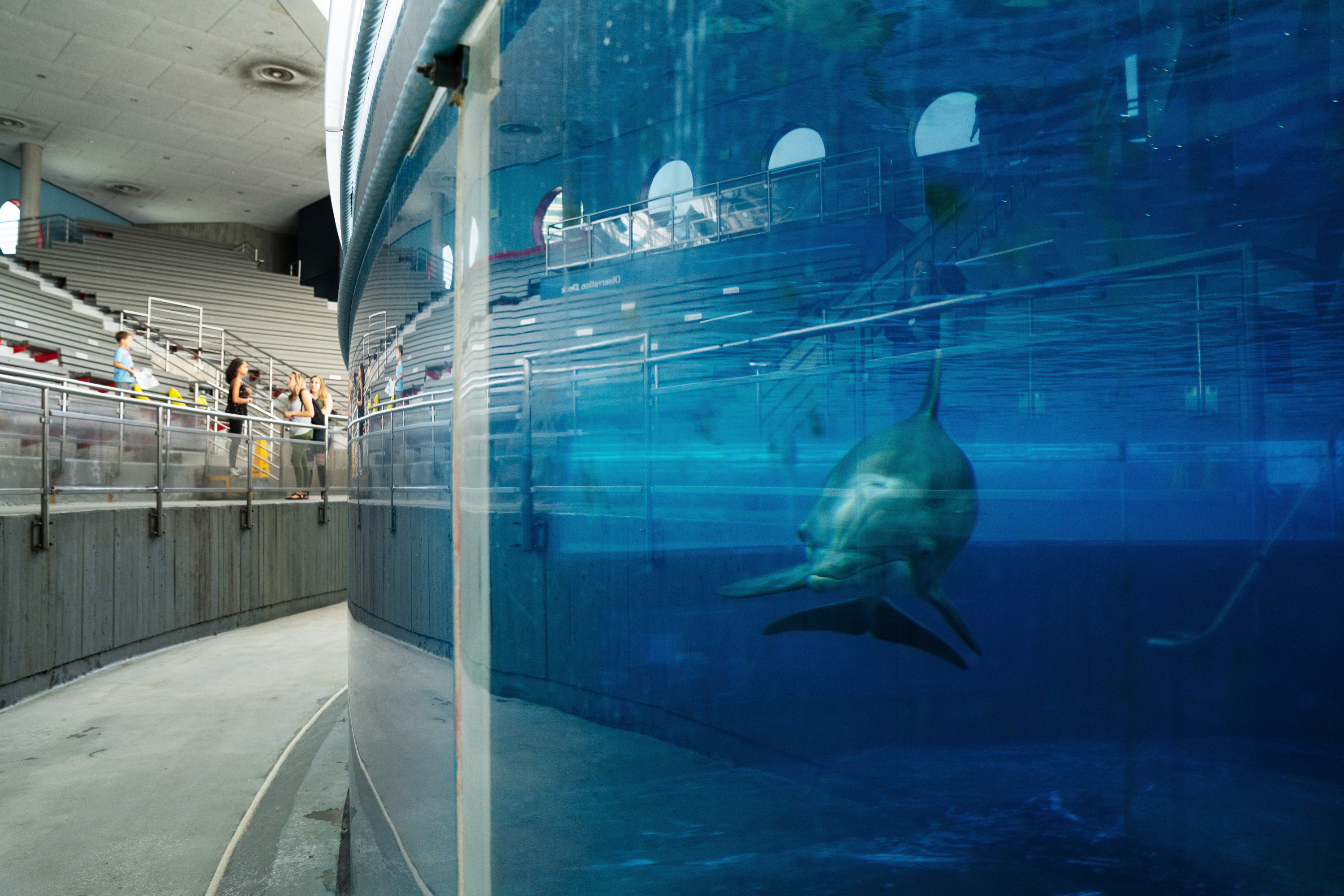 At Baltimore's National Aquarium, Climate Change Presents Challenges Inside And Out