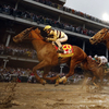 A country house, a 65-1 strike, won the Kentucky derby after a historic disqualification