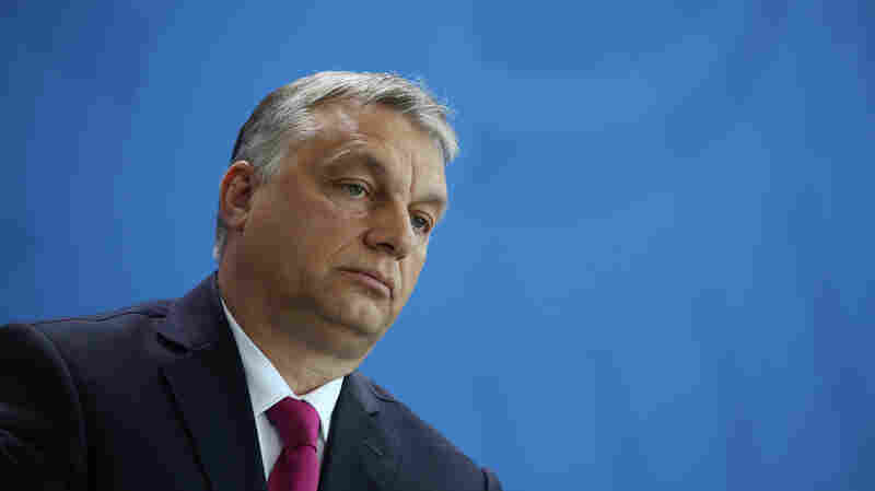 In Trump, Hungary's Viktor Orban Has A Rare Ally In The Oval Office