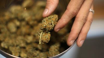 marijuana : NPR