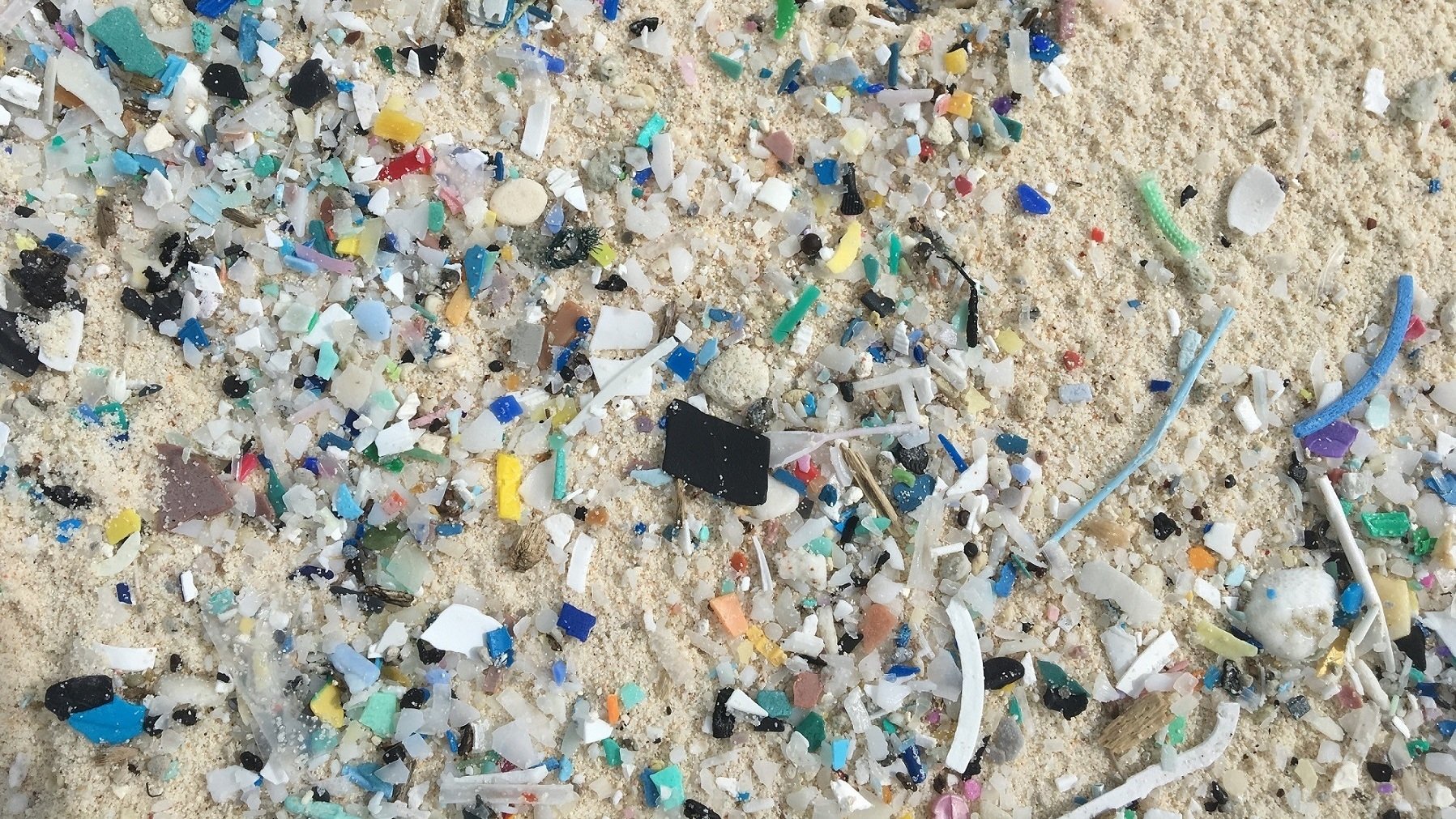 Brightly colored pieces of microplastic mar one of the 27 islands in the Cocos Keeling chain. Much of the plastic is hidden under the sand. The sun breaks down plastic debris, and the tiny pieces get buried in the sand.