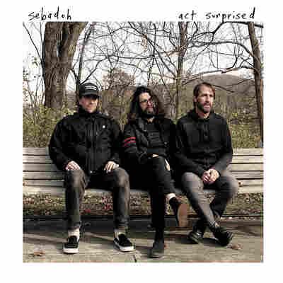First Listen: Sebadoh, 'Act Surprised'