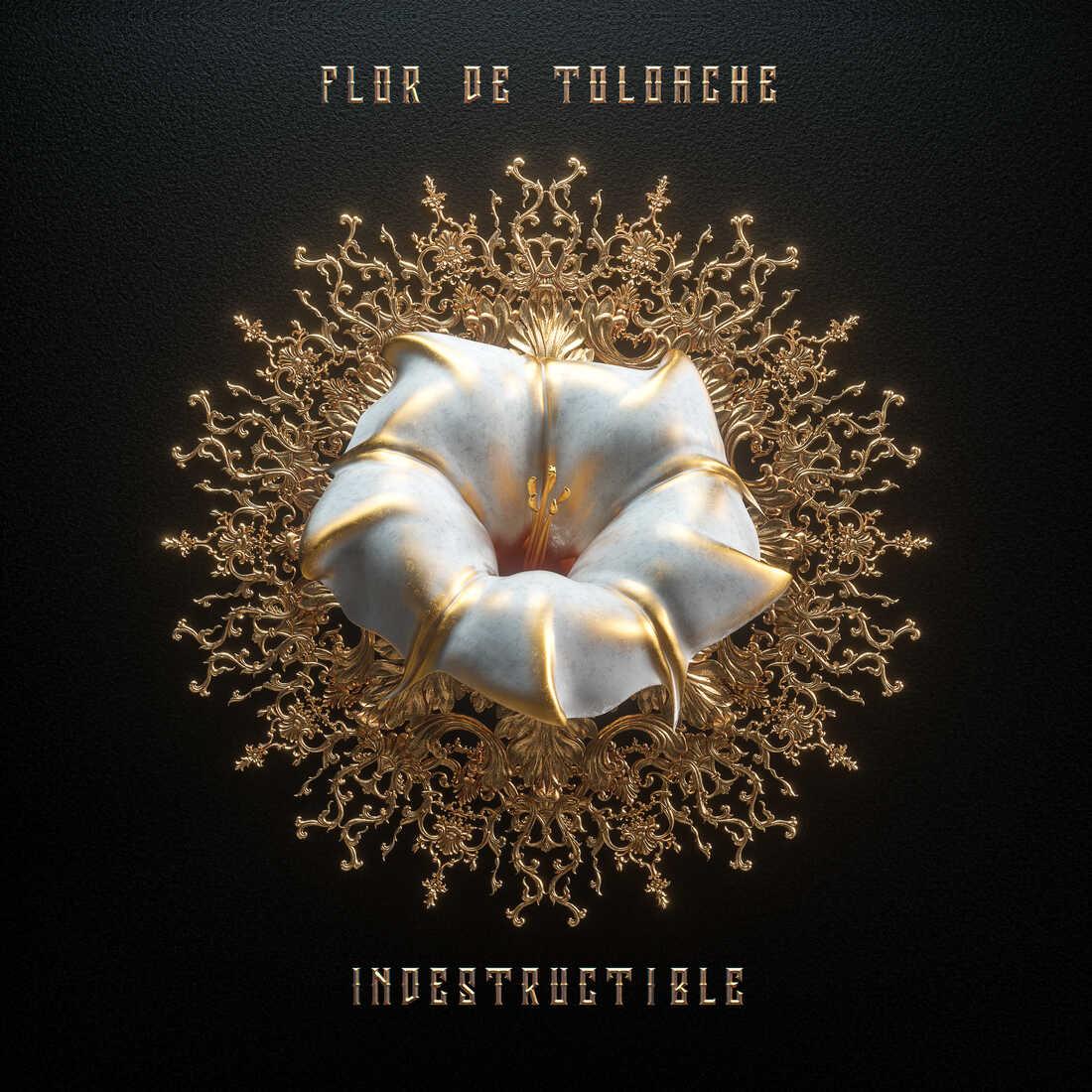 Flor de Toloache, Indestructible