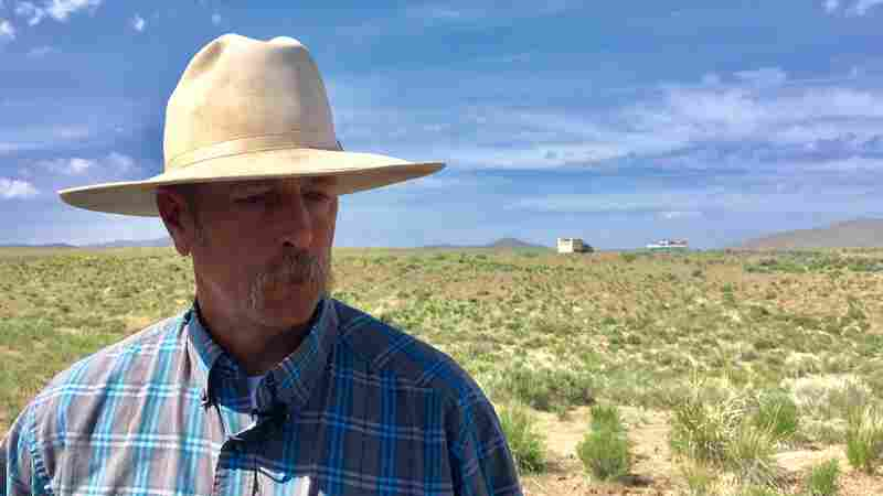 A Sea Of Sagebrush Disappears, Making Way For Fire-Prone Cheatgrass