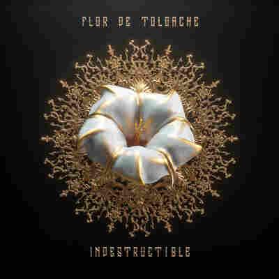First Listen: Flor de Toloache, 'Indestructible'