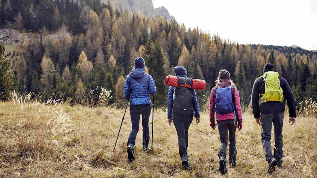 Friends hiking in the mountains.