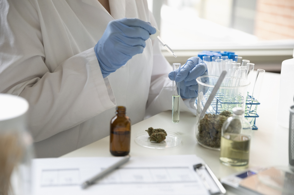 Cannabidiol, or CBD, is a compound that can be extracted from marijuana or from hemp. It doesn't get people high because it doesn't contain THC, the psychoactive component of the cannabis plant. (Getty Images)