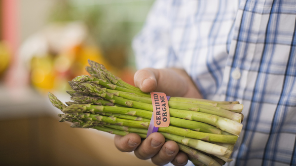 Grocery stores are full of food with labels that appeal to a consumer