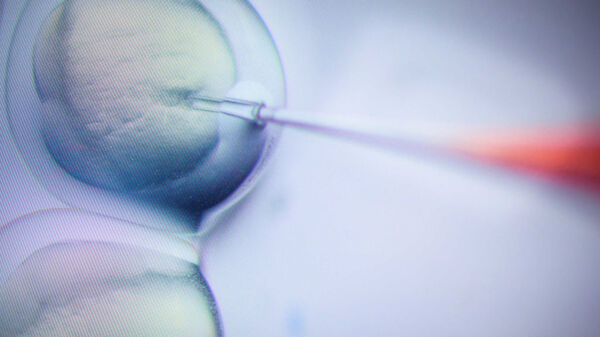 A Russian Biologist Wants To Create More Gene-Edited Babies