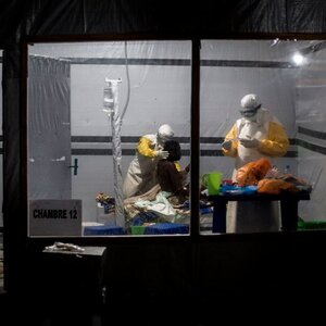 Will 1 Of These 4 Experimental Treatments Cure Ebola?