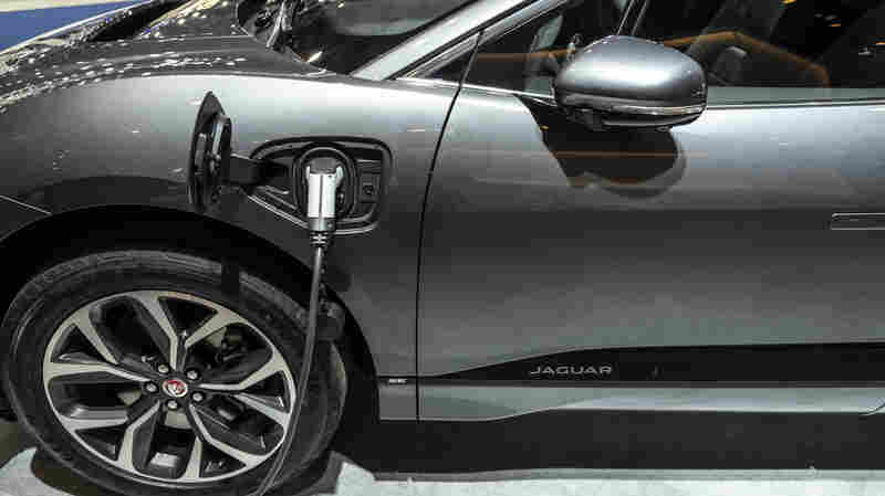 Tesla Led The Charge, But More Premium Electric Vehicles Are Arriving
