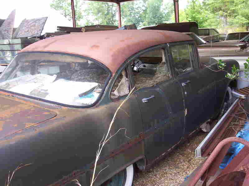 Perennial nest located inside a '57 Chevy in Elmore County, Alabama in June 2006.
