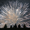 This 4th Of July, Think Of Your Feathered Friends As You Plan For Fireworks