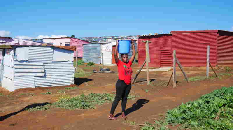 Squatters In Wine Country: South Africa Struggles With Land Reform