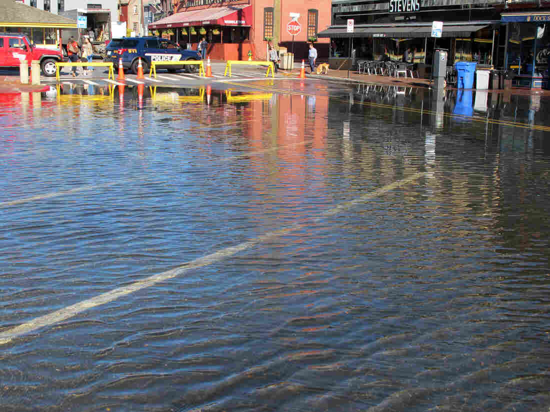 Waterfront cities face a 'floodier future,' spurred by rising seas