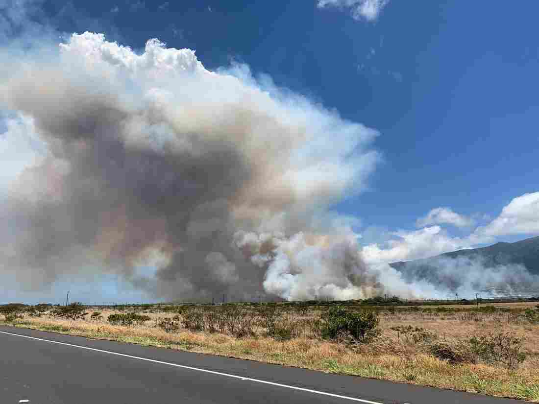 Westlake Legal Group miami_county-c9dba901acae4917ae92d82cb02a2631eaeed50b-s1100-c15 Evacuated Maui Residents Return Home After Wildfire Scorches 10,000 Acres