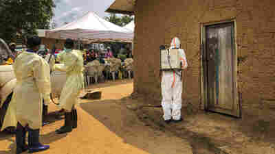 WHO Declares Ebola Outbreak In Congo An International Health Emergency