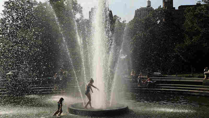Tell Us: How Are You Preparing For The Heat Wave?