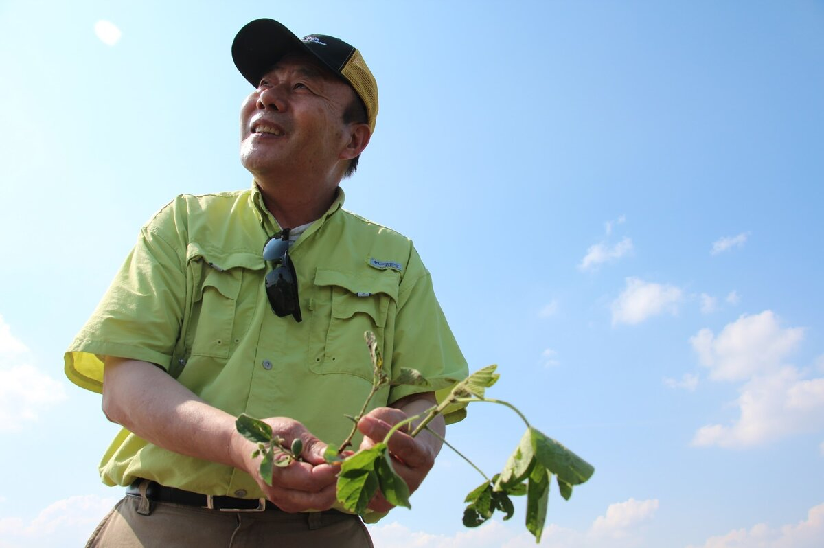 Dicamba drift is threatening soybean science
