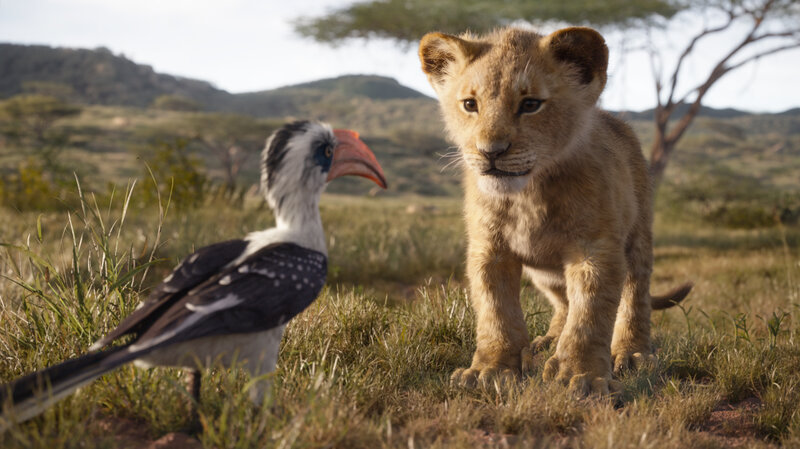 Lion King Review Disney Remake Is More Creative Dead End