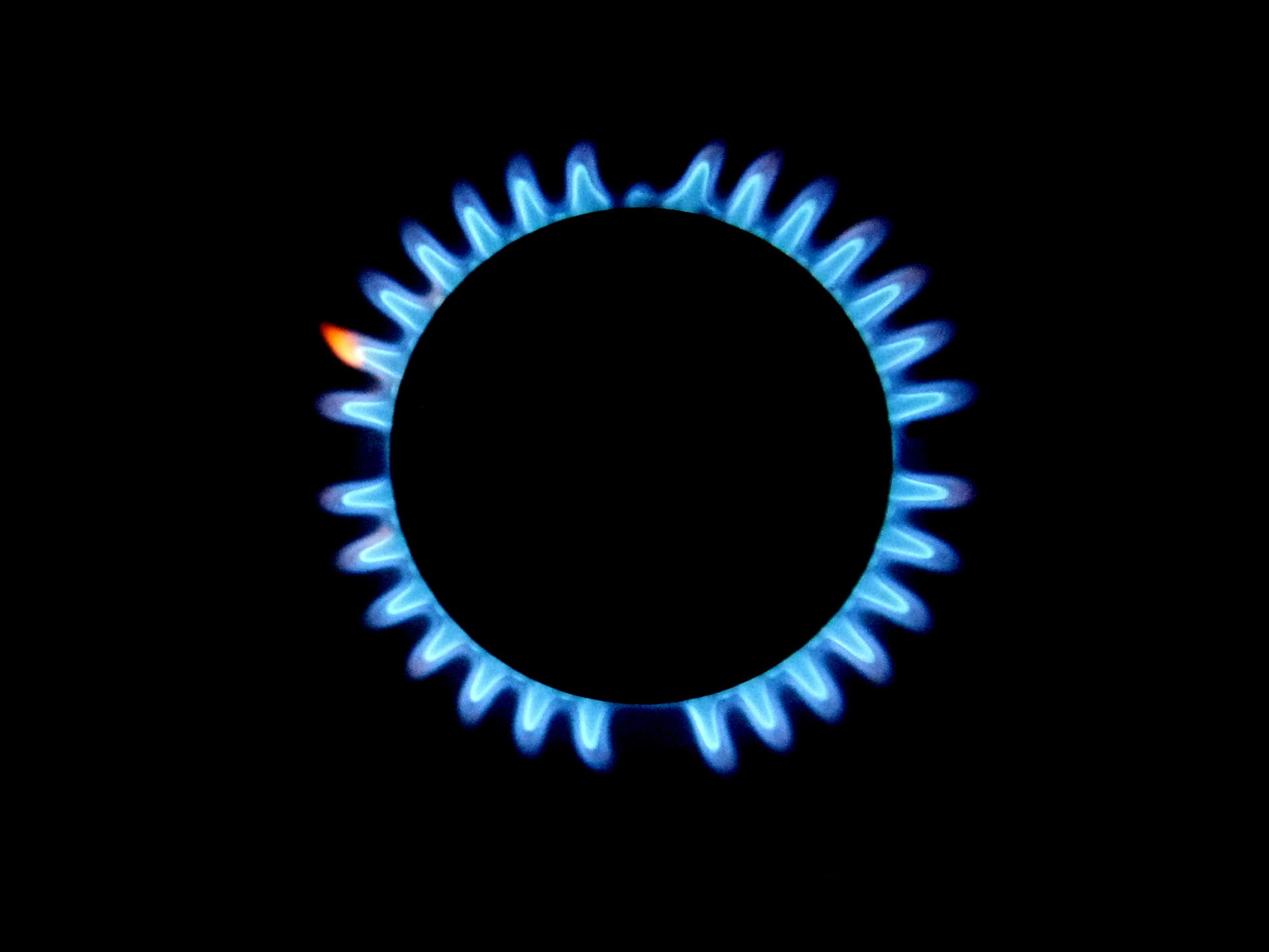 Give Up Your Gas Stove To Save The Planet? Banning Gas Is The Next Climate Push