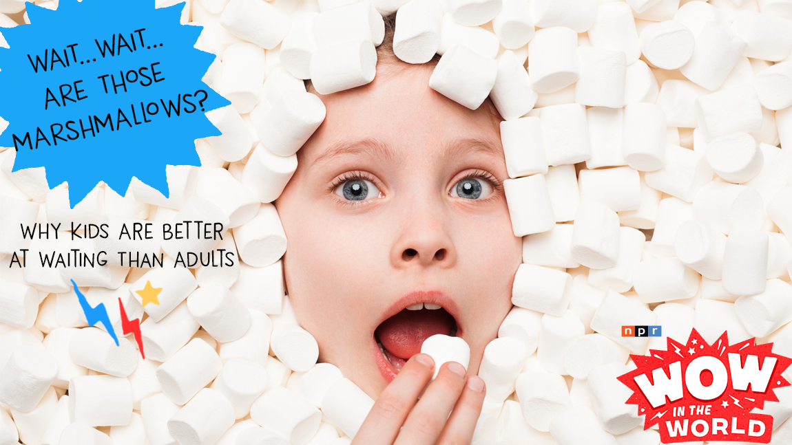 WAIT...WAIT...ARE THOSE MARSHMALLOWS? Why Kids Are Better At Waiting Than Adults