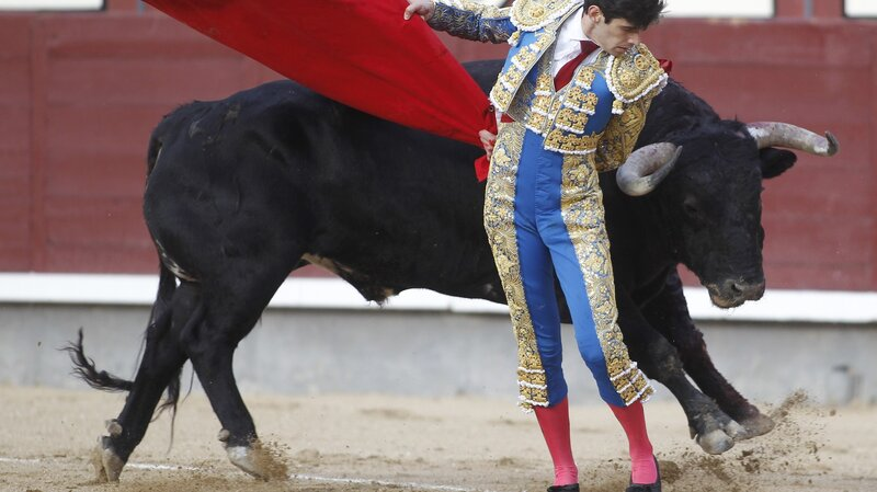 The Eating Of The Bulls: From The Spanish Fighting Ring To