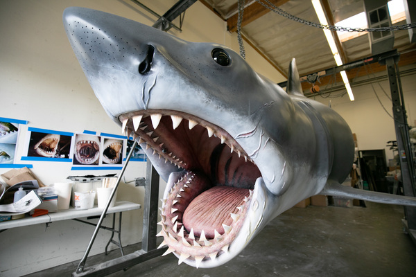 "The Jaws shark ""Bruce"" is ready for his closeup."