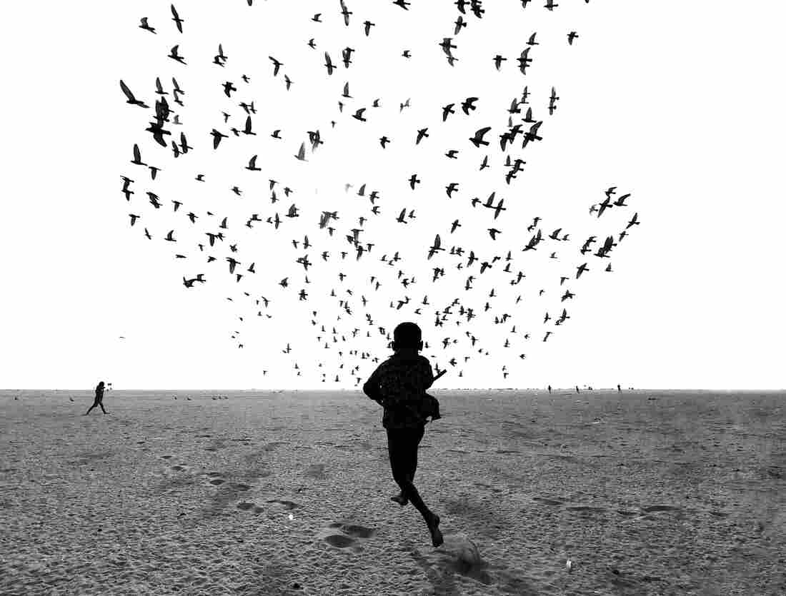 """Taken in Tamil Nadu, India, the picture is part of a series that the photographer titled: """"We Run, You Fly."""""""