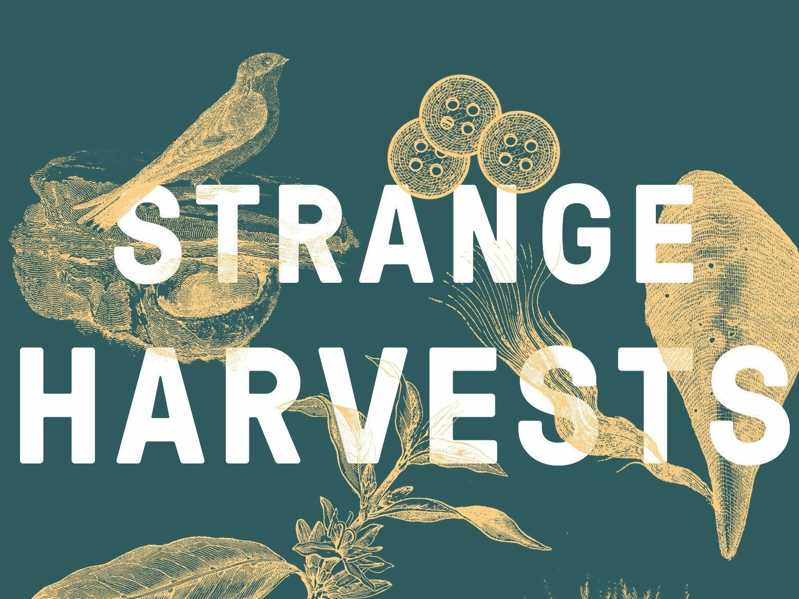 Strange Harvests' Turns Nature's Fairy Tales Inside Out | NCPR News