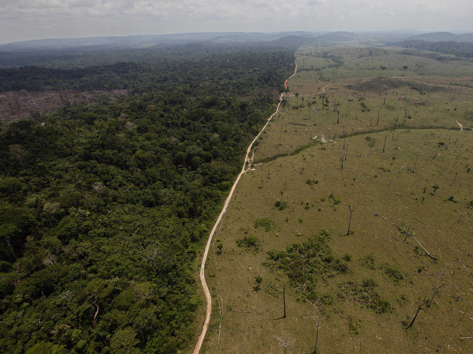 Large swaths of forest have been cut down in Brazil in recent decades to make room for farming. Deforestation contributes to global warming, and reversing it will be necessary to avoid catastrophic climate change. (Andre Penner/AP)