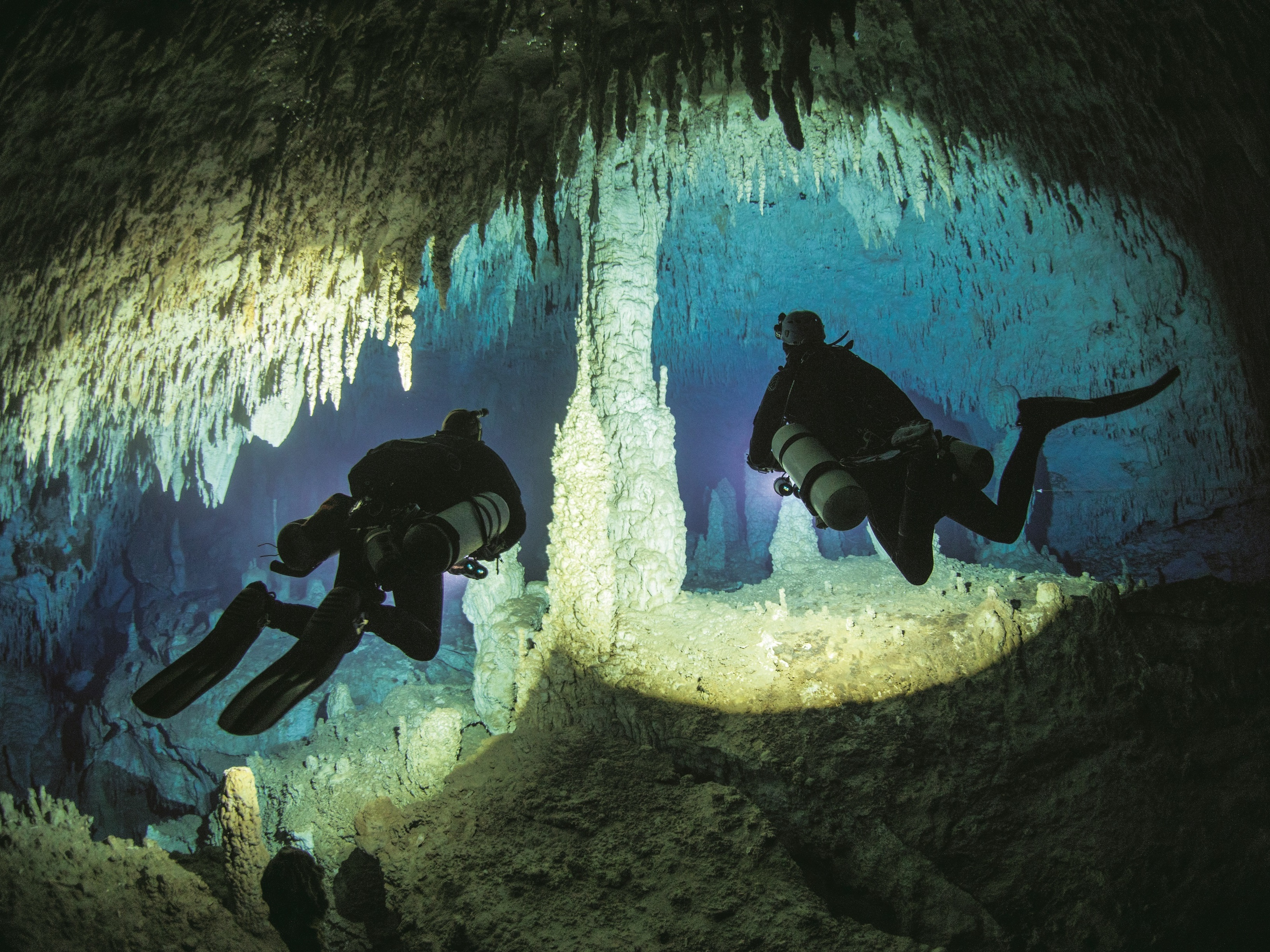 Fresh Air Weekend: Cave Diver Jill Heinerth; Character Actor Stephen Root