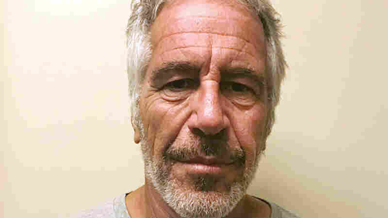 A Dead Cat, A Lawyer's Call And A 5-Figure Donation: How Media Fell Short On Epstein