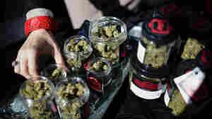 California Says Its Cannabis Revenue Has Fallen Short Of Estimates, Despite Gains
