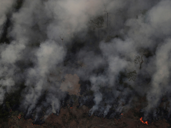 Smoke billows during a fire in an area of the Amazon rainforest near Porto Velho, Rondonia State, Brazil, Brazil earlier this week.