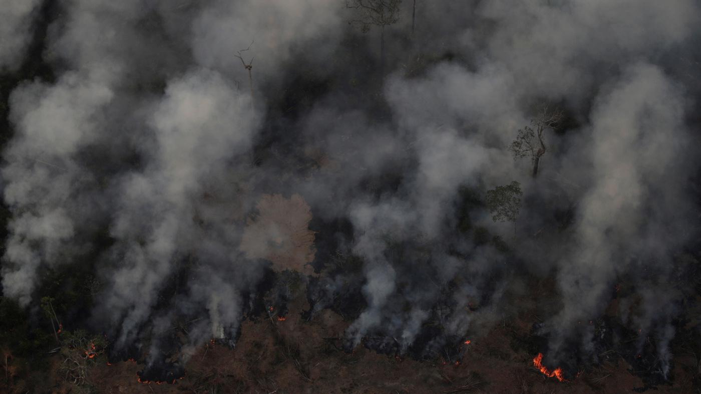 PHOTOS: The Amazon Rainforest, Ablaze In Brazil